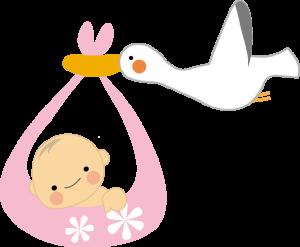 母子保険サービス1